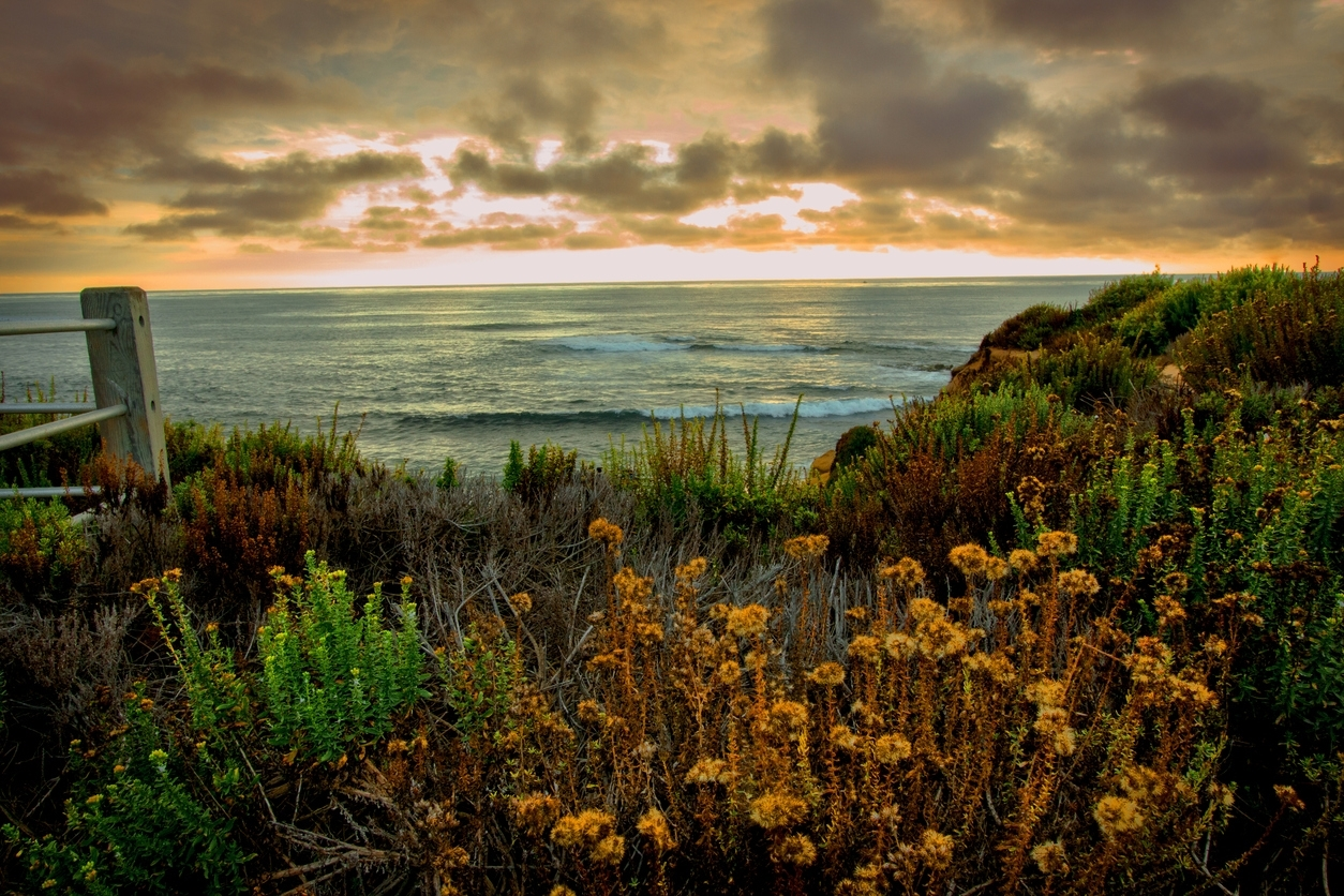 Killing Time Beyond Oceanfront Hotels Carlsbad Ca